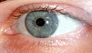 L'occhio elettronico è ovunque!